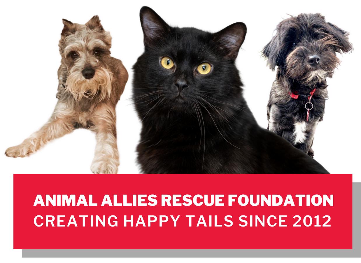 Animal Allies Rescue Foundation