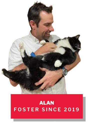Alan, foster since 2019